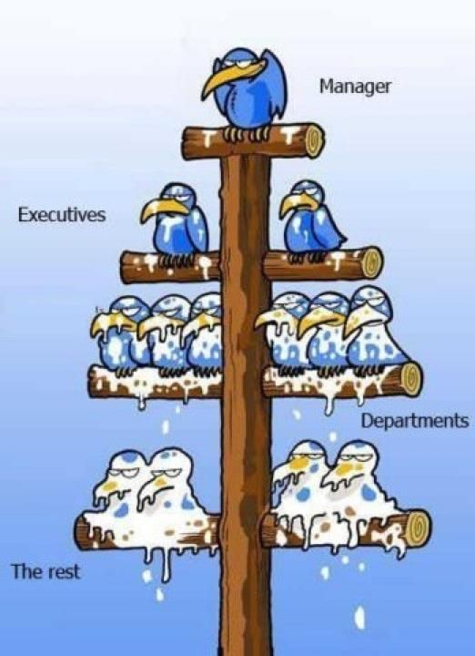 vogels-managers2